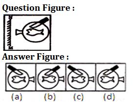 SSC CHSL/CGL के लिए रीजनिंग क्विज 23 जनवरी 2020 : Odd One Out, Series and Statement Conclusion_50.1