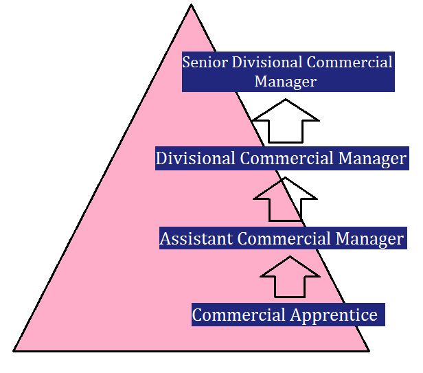 Commercial apprentice career